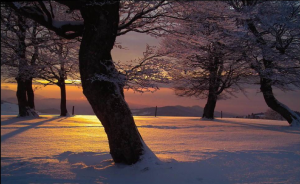 snowy-sunset
